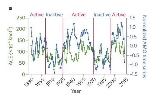 Analyses of Atlantic Multidecadal Oscillation (AMO) variability